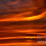 Sea Of Sun Art Print by Alan Look