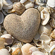 sea shell Heart Print by Boon Mee