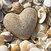 sea shell Heart Art Print