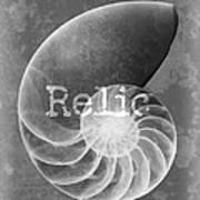 Sea Shell Relic Logo Art Print