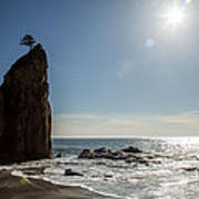 Single Sea Stack In Olympic National Park Art Print