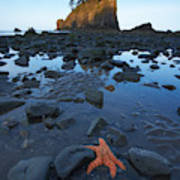 Sea Stacks And Star Fish Art Print