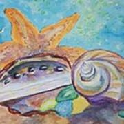 Sea Star-abalone-snail Shell Art Print