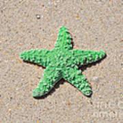 Sea Star - Green Art Print by Al Powell Photography USA