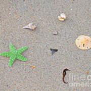 Sea Swag - Green Art Print