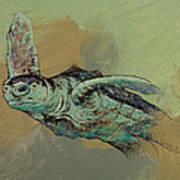 Sea Turtle Art Print by Michael Creese
