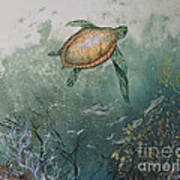Sea Turtle Art Print by Nancy Gorr