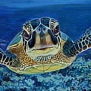 Sea Turtle Art Print by Shirl Theis