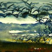 Seabirds Rising From The Marsh 2-27-15  Art Print