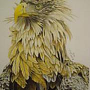 Seaeagel Art Print