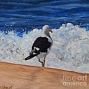 Seagull And Surf Art Print