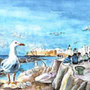 Seagull In Essaouira In Morocco Art Print