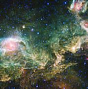 Seagull Nebula Art Print