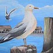 Seagull On Piling Art Print