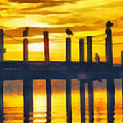 Seagull Sunset Art Print