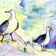 Seagulls In Calpe In Spain Art Print
