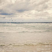 Seagulls Take Flight Over The Sea Art Print