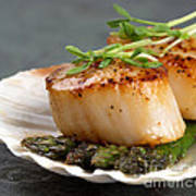 Seared Scallops Art Print