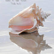 Seashell Be Still Art Print