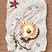 Seashell With The Pearl Sea Star And Seaweed  Art Print