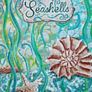 Seashells II Art Print