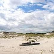 Seaside Driftwood And Dunes Art Print