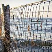 Seaside Nets Art Print