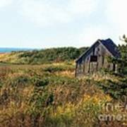 Seaside Shed - September Art Print