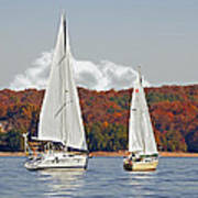 Seasonal Sailing Art Print by Susan Leggett