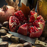 Seasonal Still-life Art Print