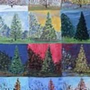 Seasons Of A Dawn Redwood - Sold Art Print