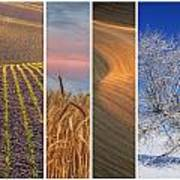 Seasons Of The Palouse Art Print by Latah Trail Foundation