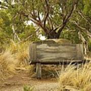 Secluded Bench Art Print