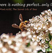 Secret Life Of Bees Art Print