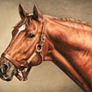Secretariat At Claiborne Art Print by Thomas Allen Pauly