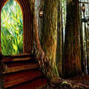 Secrets Of The Forest Art Print