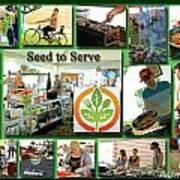 Seed To Serve Rw2k14 Art Print
