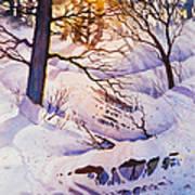 Seldovia Ravine Art Print