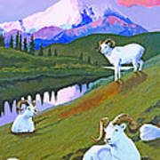 Sentinel Denali Art Print