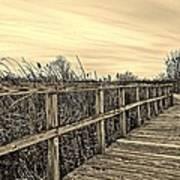 Sepia Boardwalk Art Print