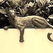 Sepia Cat Art Print
