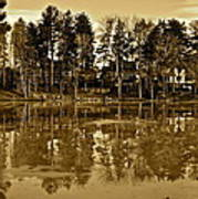 Sepia Reflection Art Print