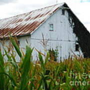 September Corn Barn Art Print