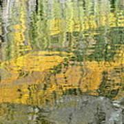 September Reflection Art Print