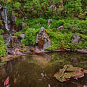 Serene Garden Pond Art Print