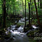 Serene Greenbrier Area Stream  Art Print