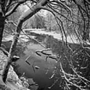 Serene Winter Stream Art Print