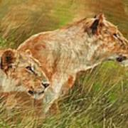 Serengeti Sisters Art Print
