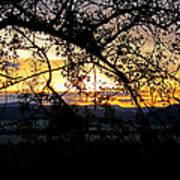 Serengeti Sunset Art Print
