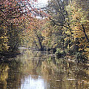 Serenity River Art Print by Nancy Edwards